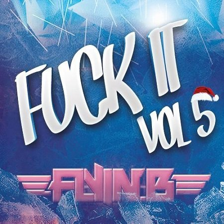 DJ Flyin B - FUCK IT VOL.5 - inkl. Mashup Germany