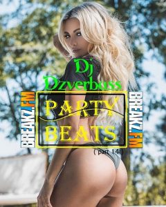 Dj Dzverbass- Party Beats ( Part 14 )